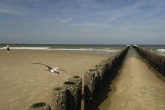 Strand bij Domburg