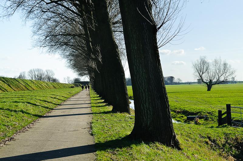 Gedekte gemeenschapsweg, Houten